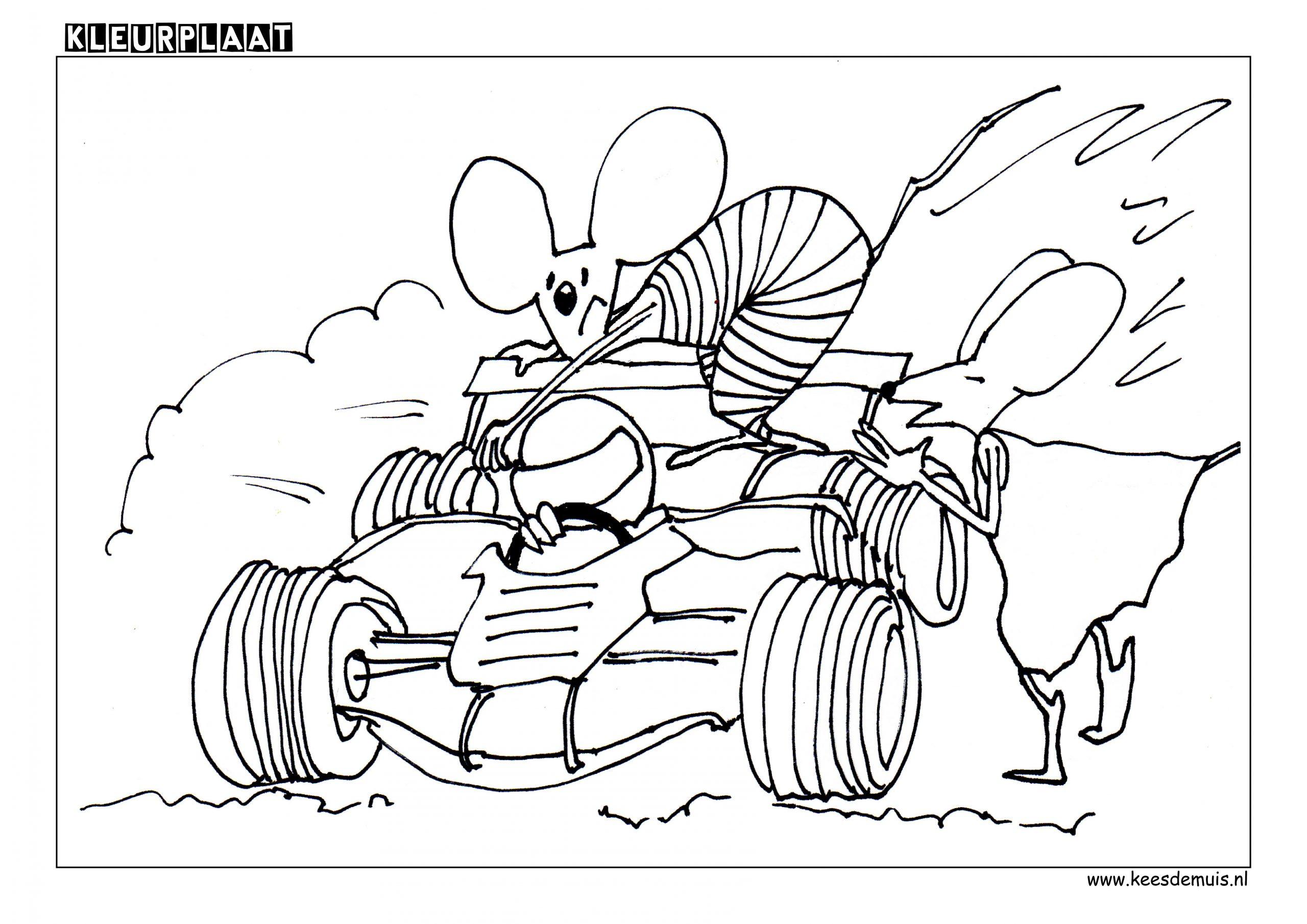 Kleurplaat racen Max Verstappen | Kees de Muis